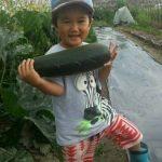 若手農業家とのコラボ企画「夏野菜収穫体験&セミナー」