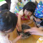 子供料理教室 キッズ・クッキング(2~3歳) 2013.5月度1回目のご報告