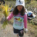 米作りの会2012 稲刈り