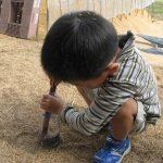 「米作りの会」2011 収穫祭